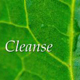 Cleanse - Colon hydrotherapy - Holistic Therapy - Colonic irrigation Edinburgh - Nutrition advice Edinburgh.ce Limited Edinburgh