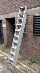 AL5 Ramsey Ladder
