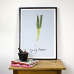 Spring Onion Giclee Print