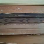 Water Damaged Floorboard