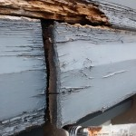 Rotten Weatherboard