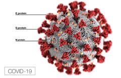 Covid-19 Virus, Coronavirus